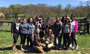 Standing Hope Equine Therapy