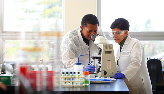 Clinical Laboratory Science Major Neumann University