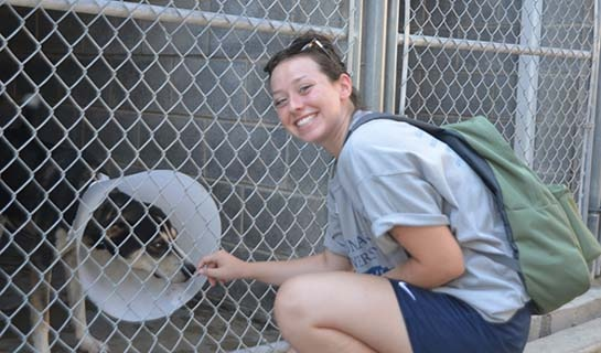 NU student playing with a dog at Providence Animal Center
