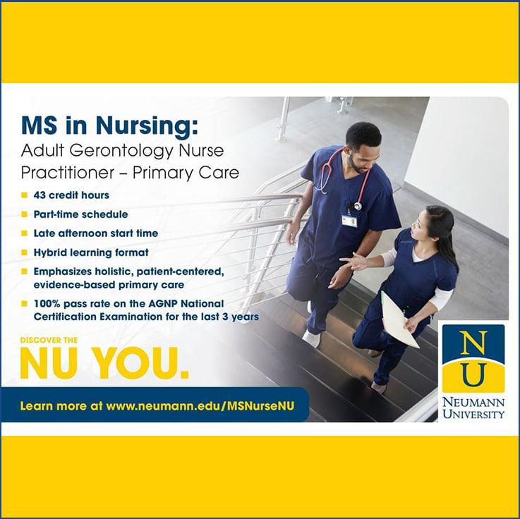 nursing-gert2